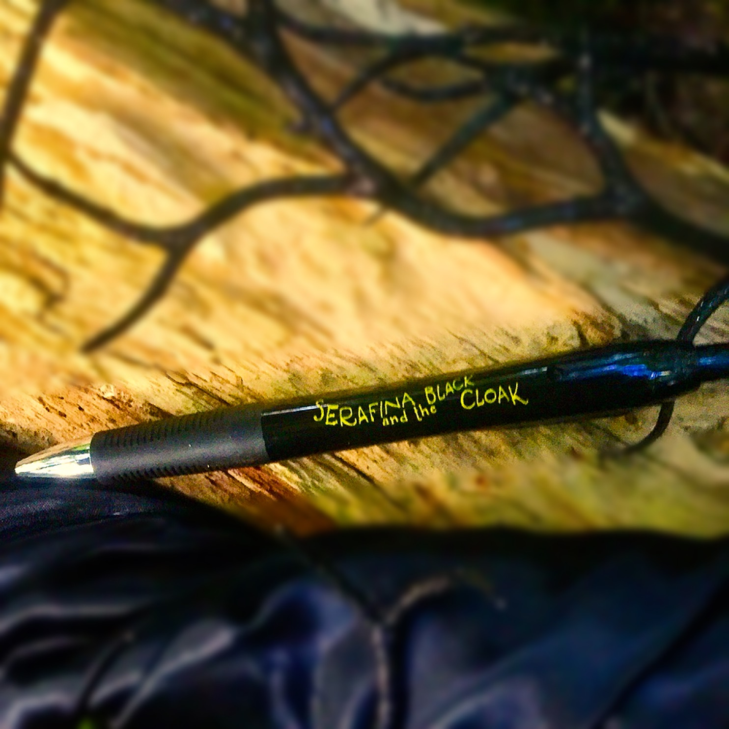 serafina-and-the-black-cloak-writing-pen-robert-beatty-biltmore-asheville-disney-hyperion